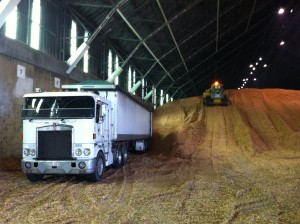 Woodchip Hauling 90 m/3 14-06-2013 11-28-41 AM
